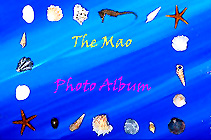 Mao Photo Album